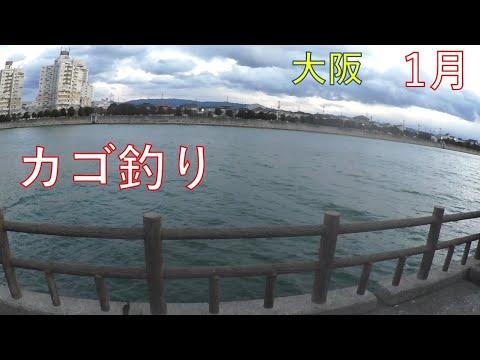 大阪で遠投カゴ釣り『1月』