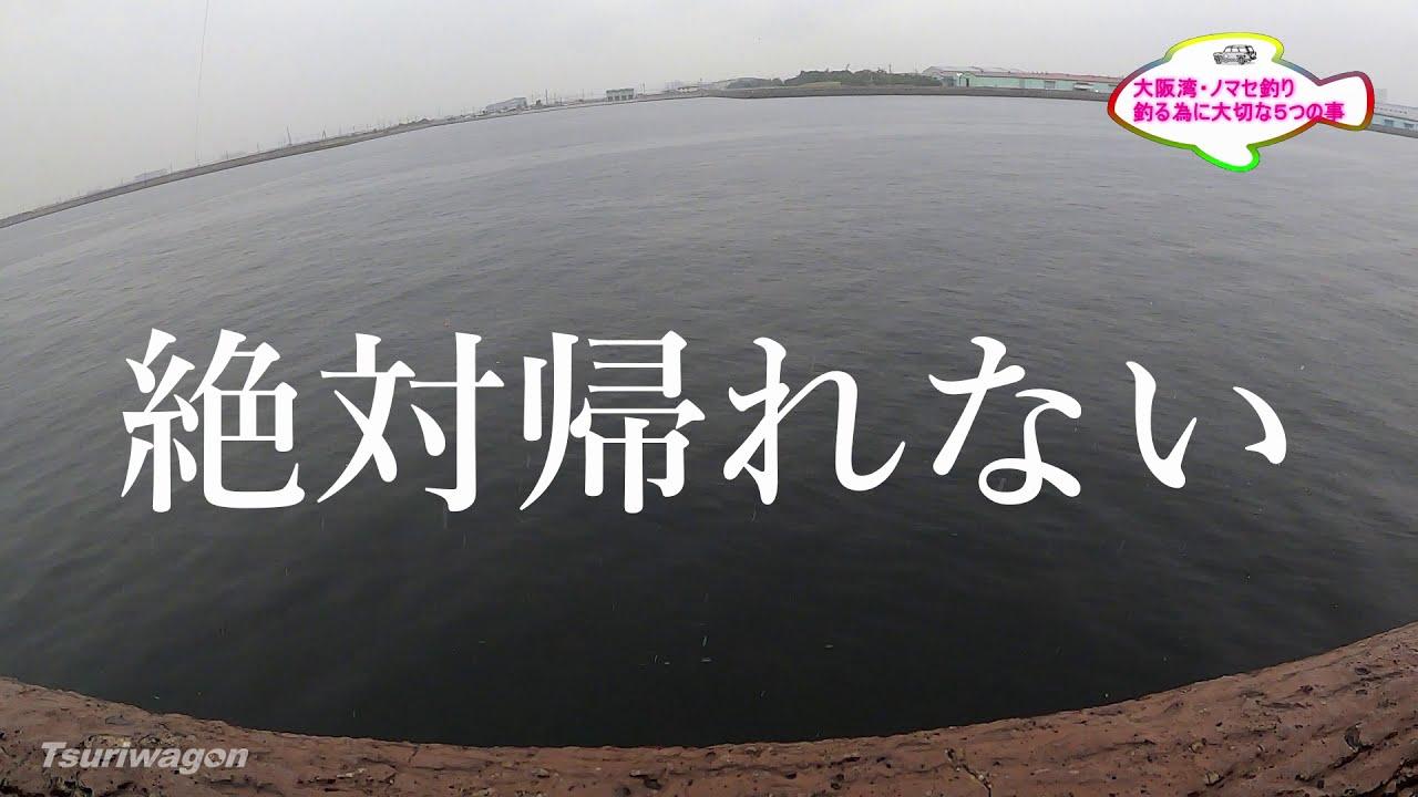 【ノマセ釣りは最強】大阪湾 つりワゴン