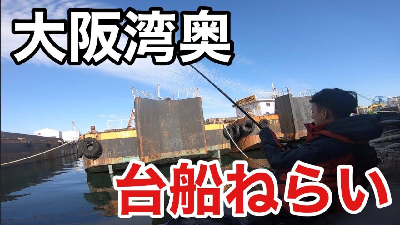 寒くても釣れる【エビ撒き釣り】見えチヌ、ハネ