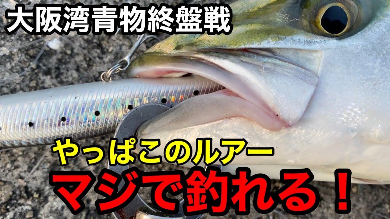 【大阪湾で青物釣るなら】この激安ルアーがオススメ!