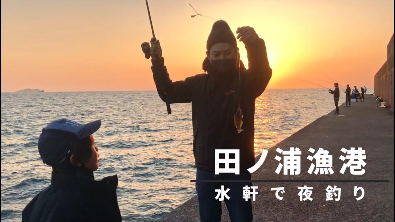 田ノ浦漁港で夕マズメを狙う!夜は水軒