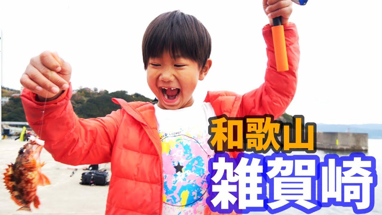 冬の和歌山雑賀埼漁港で青物・根魚狙い!