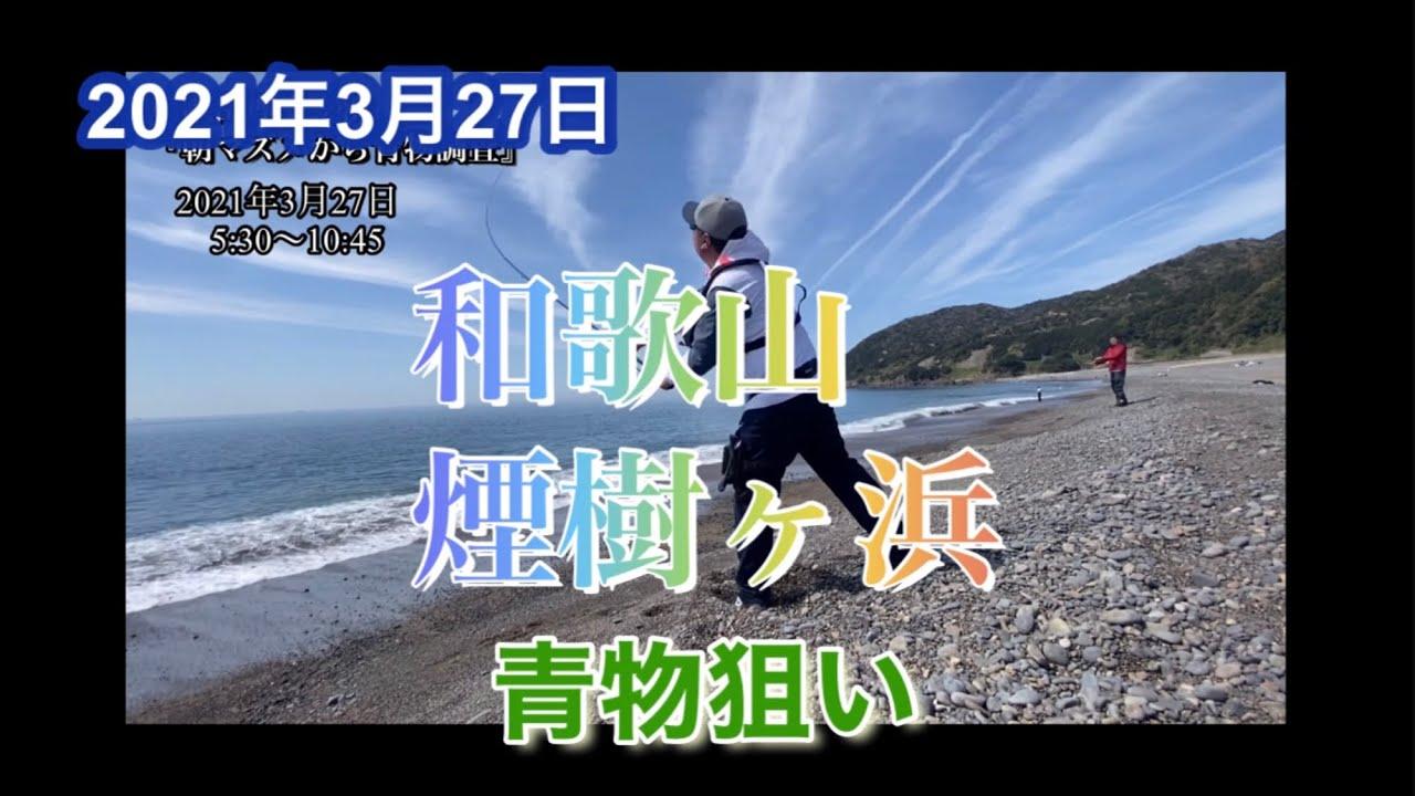 煙樹ヶ浜『朝マズメから青物調査』2021.3.27
