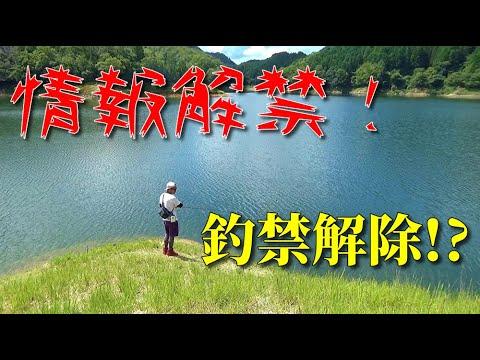 大規模なバス釣り場が関西に登場《室生ダム釣り場》