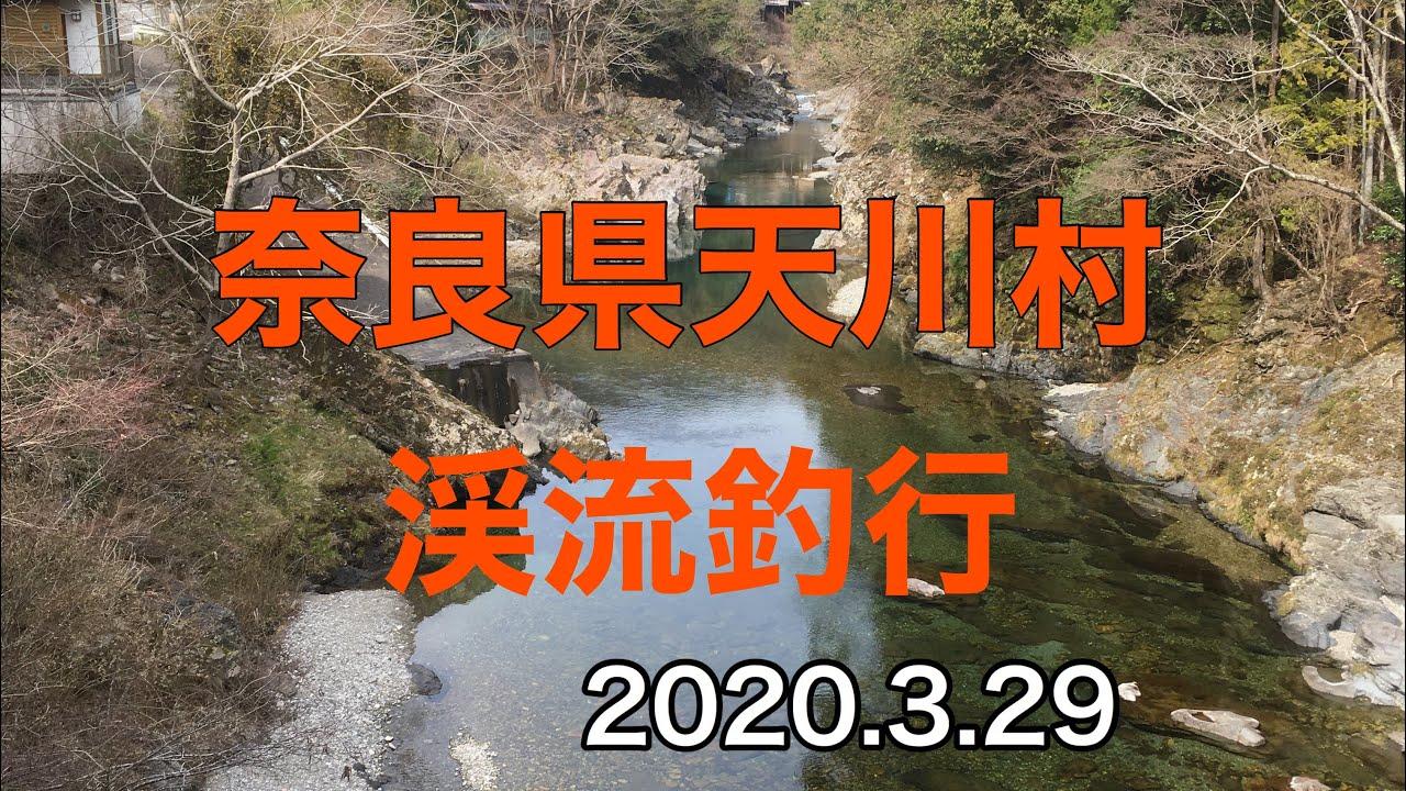 奈良県天川村渓流釣り