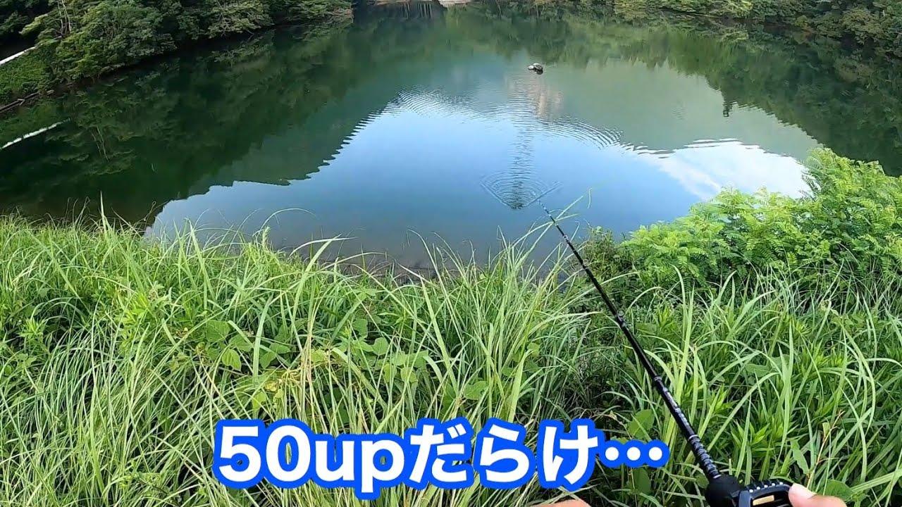 【バス釣り】初めて訪れた野池がヤバすぎた!