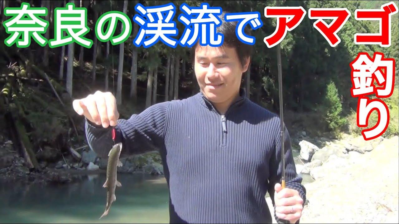奈良の木地が森渓流釣り場でアマゴ釣り!
