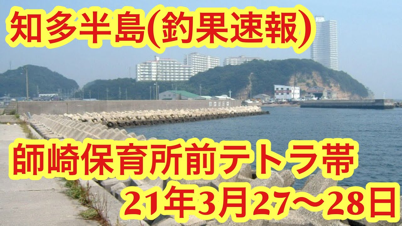 釣果速報!師崎保育所前テトラ帯!21年3月27、28日!