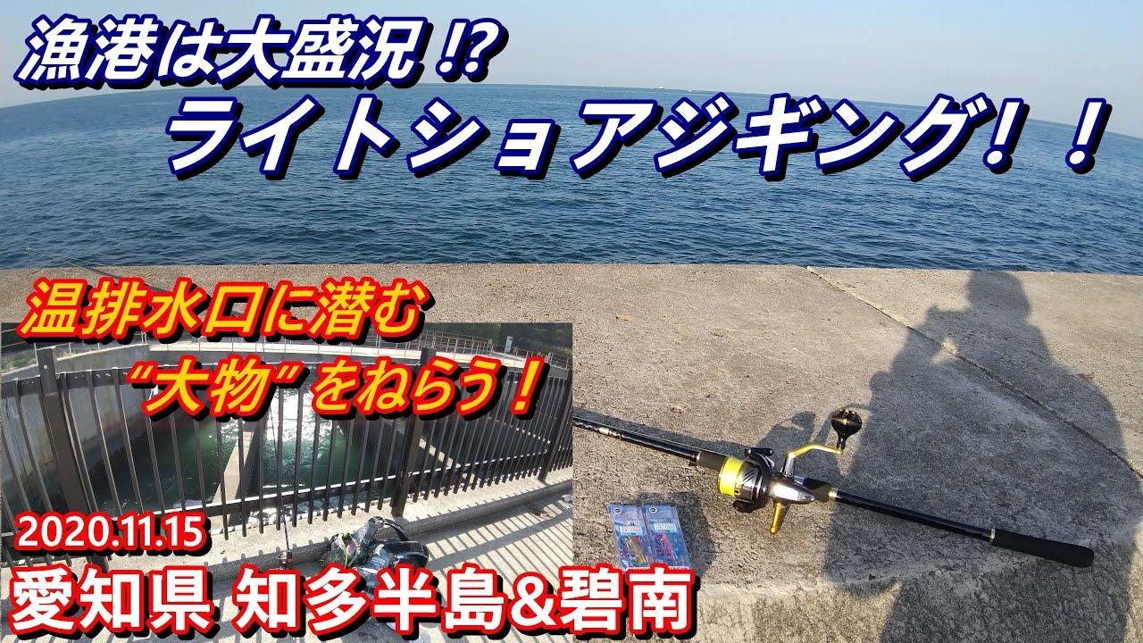 ライトショアジギング & エサ釣り 【 知多半島 】