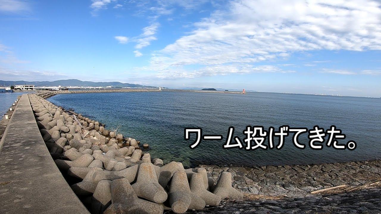 【形原漁港】ワーム投げてきた。