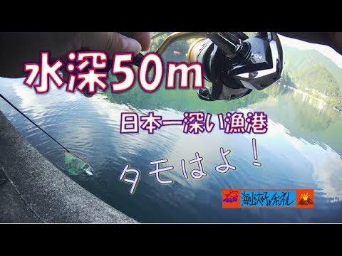 日本一水深の深い漁港で釣り!(九鬼漁港)