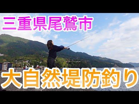 堤防釣り〜尾鷲市〜