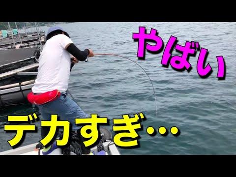 筏釣り☆ダンゴで鯛、チヌ狙いのはずが・・・