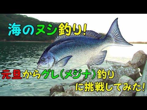 三重県大紀町錦漁港でフカセ釣り