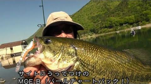 釣りニンジャのぶらぶら旅 世界遺産登録記念 山梨県・西湖