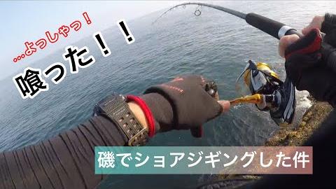 能登の磯に釣りに行った件