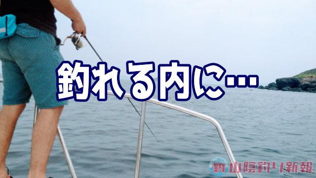 釣れる内に釣っておこう♪