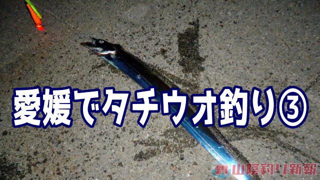 愛媛出張で…タチウオ釣り③