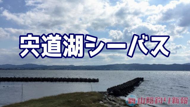 宍道湖シーバスを求めてin松江市2日目