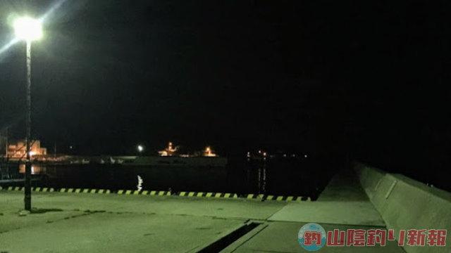 タチオウの幻想的な夜釣りin高松
